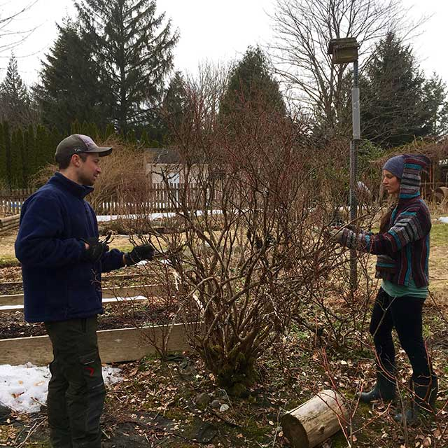 Landscaping services education one-on-one classes ecological sustainability